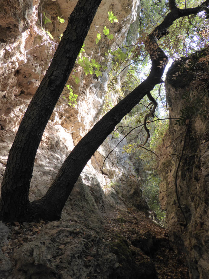 B_Grotte